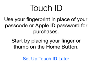 iPhone 6 setup Touch ID