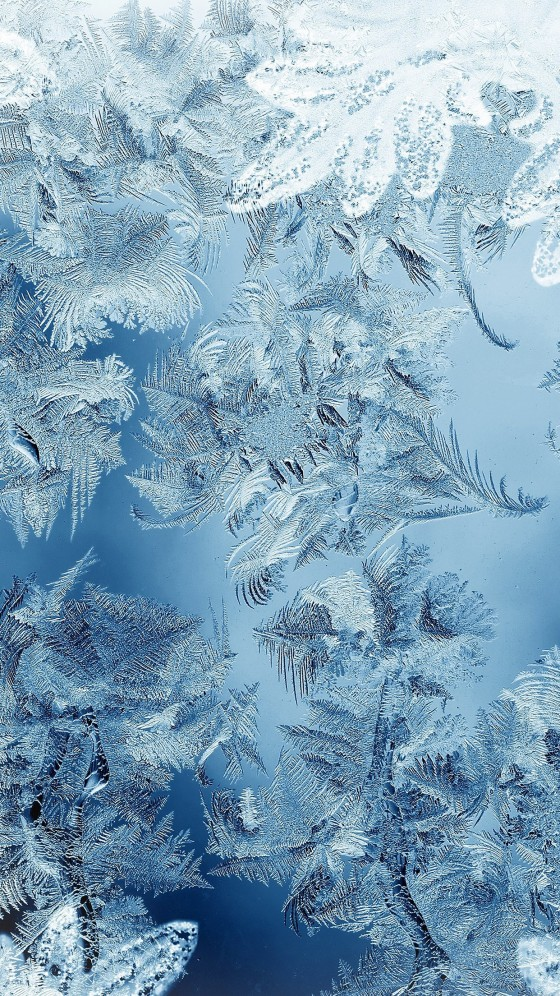 snow christmas iphone 6s wallpaper