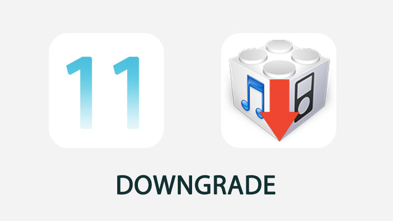 downgrade ios 11