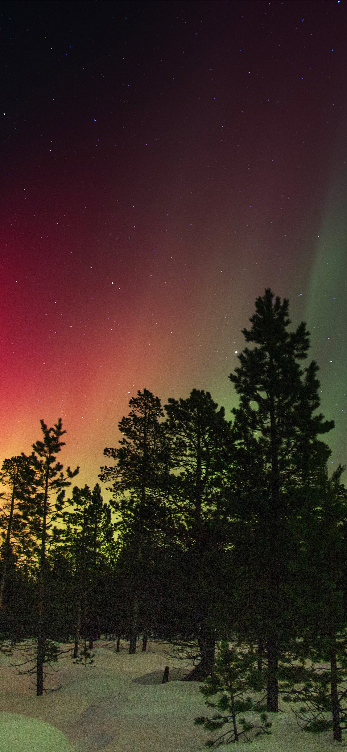 sky aurora christmas wallpaper for iphone