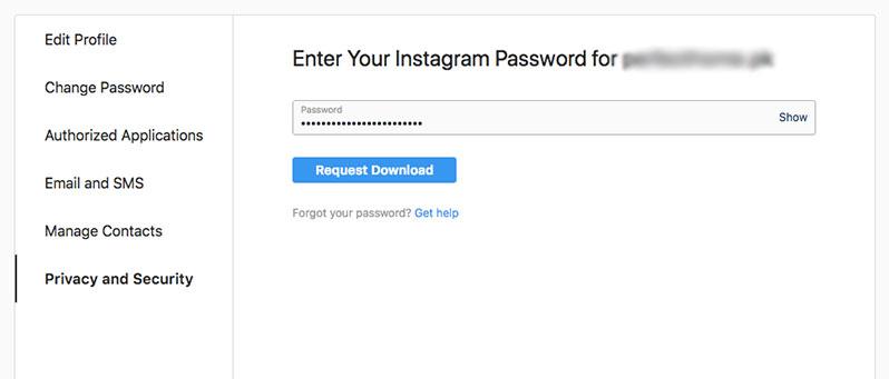 request to download instagram data