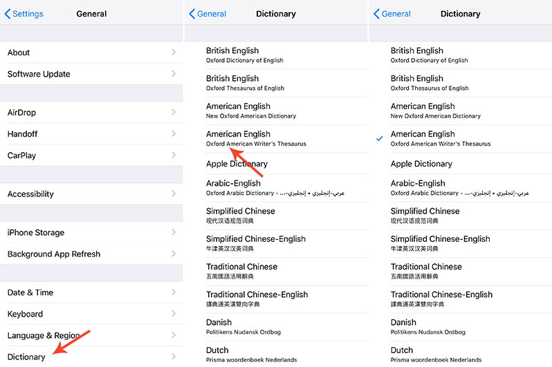 how to enable thesaurus on iphone ios 12
