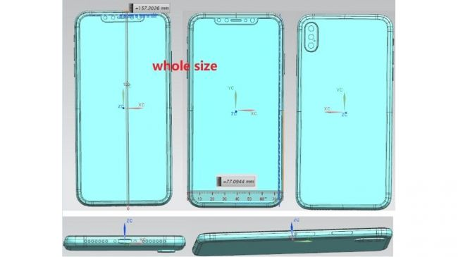 iphone XS size and design