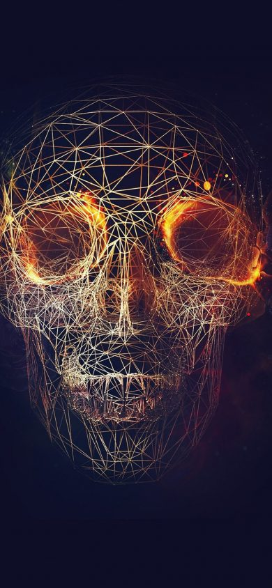Digital Skull Art iPhone XR wallpaper 828x1792