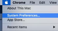 delete icloud backup system preferences