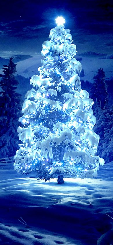 Beautiful Christmas Tree iPhone XR Wallpaper