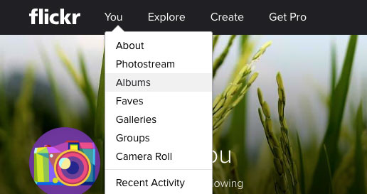 download flickr photos by album