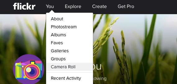 download flickr photos by camera roll